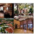 Sarasota Florida Condo, Resort Style Community, Luxurious Amenities